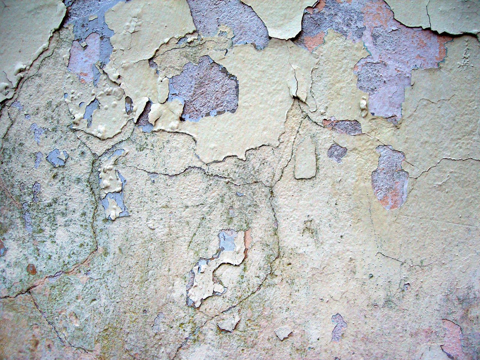 Wall Skin 2