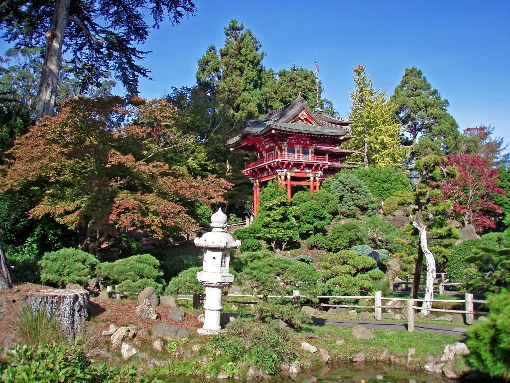 freeprom日本_free 日本茶花园 stock photo