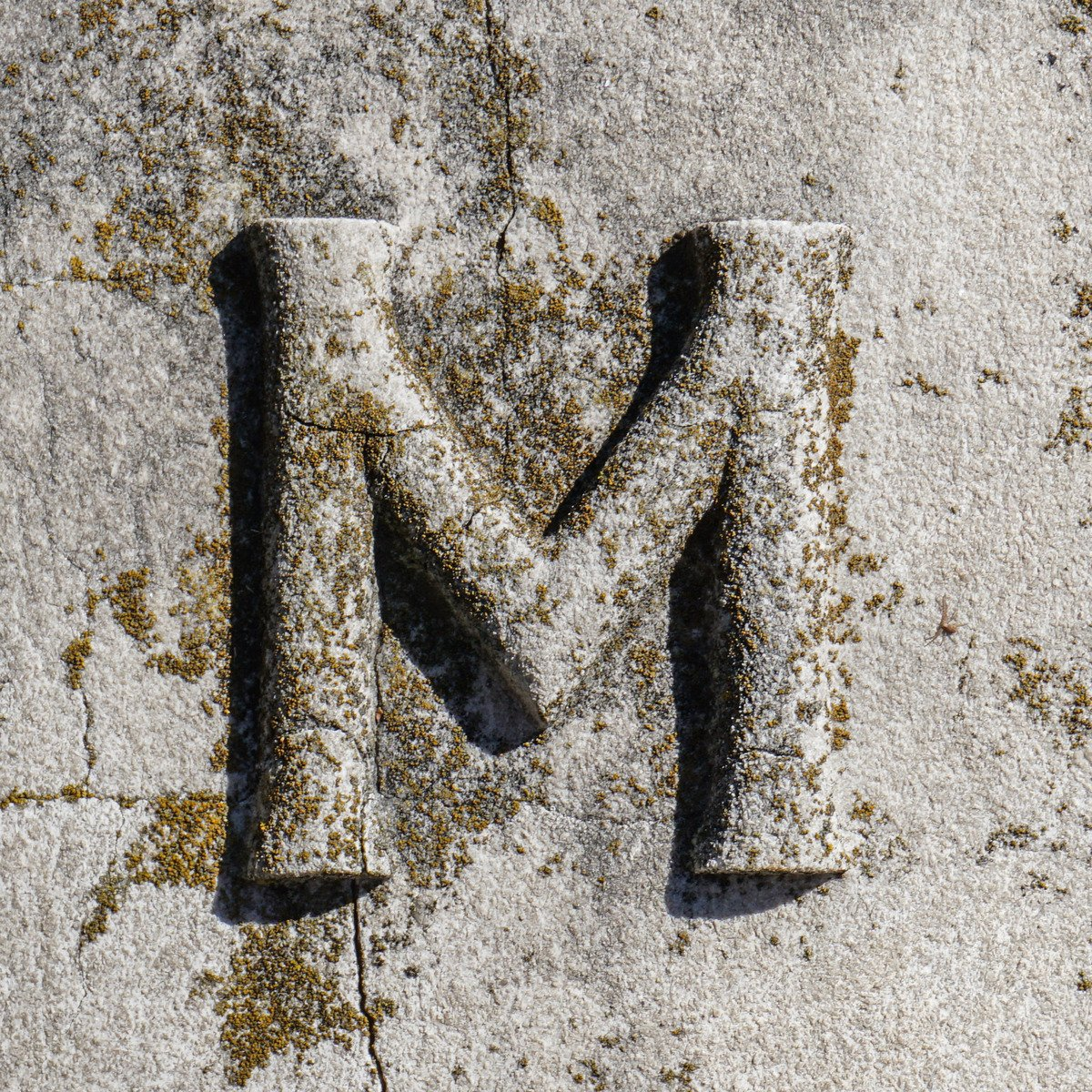 Free Letter M Stock Photo Free Letter