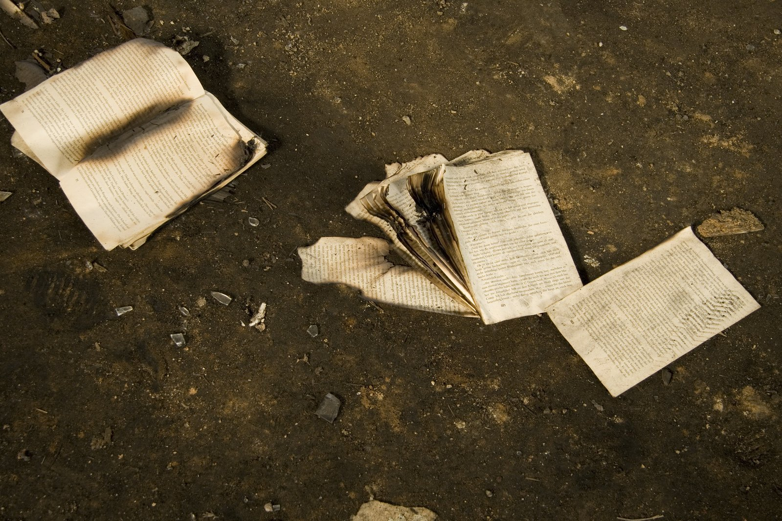 Burned Book, Scattered Pages, Wisdom, Lies