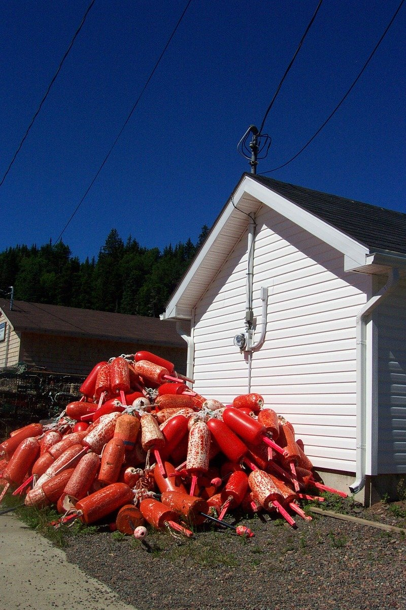 Free Lobster Buoys Stock Photo - FreeImages.com