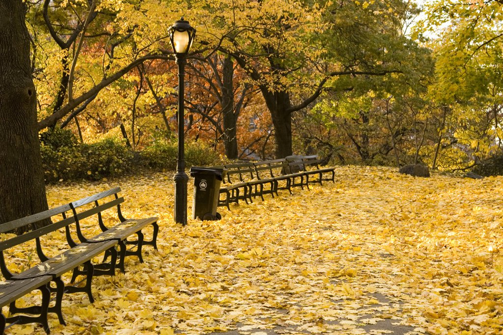 Autumn in New York 3