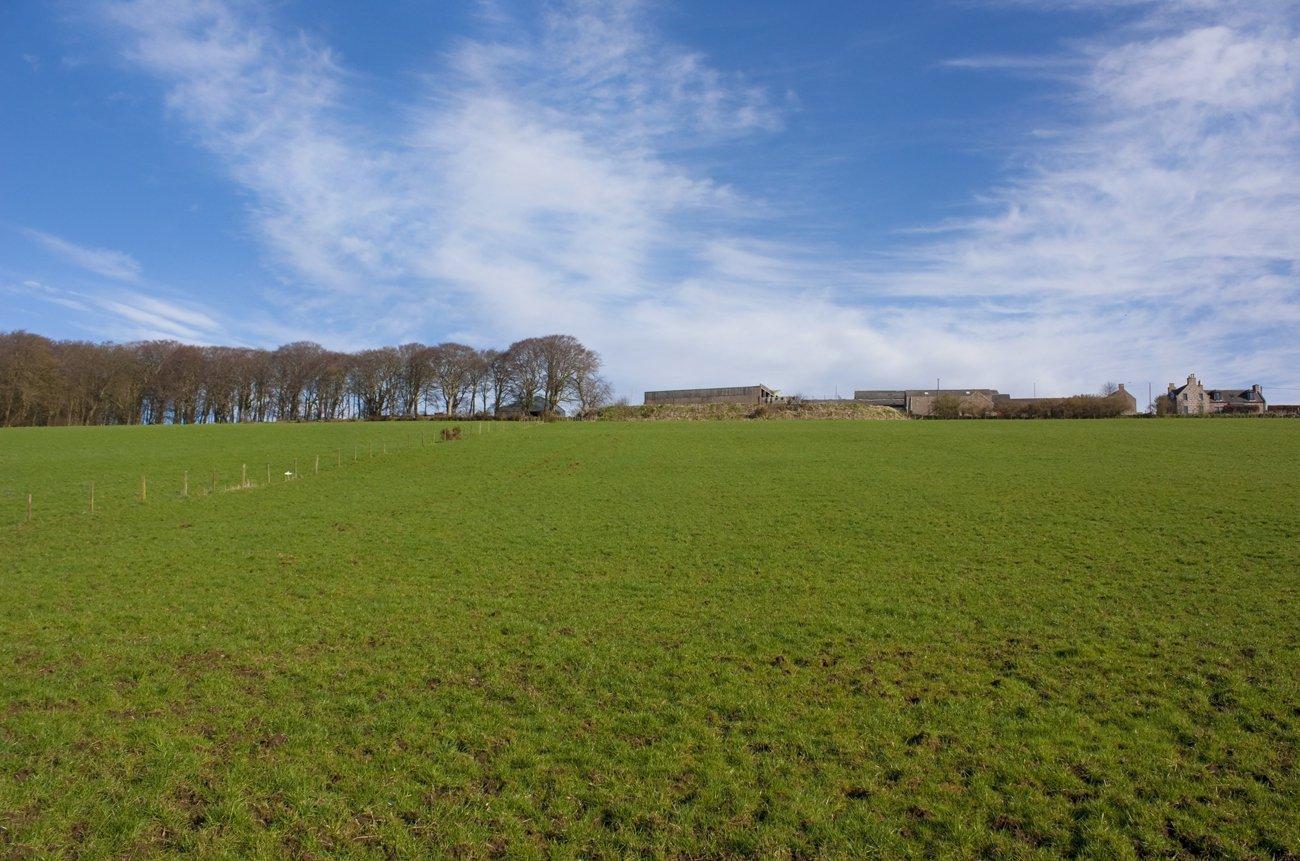 Free Green Field Stock Photo
