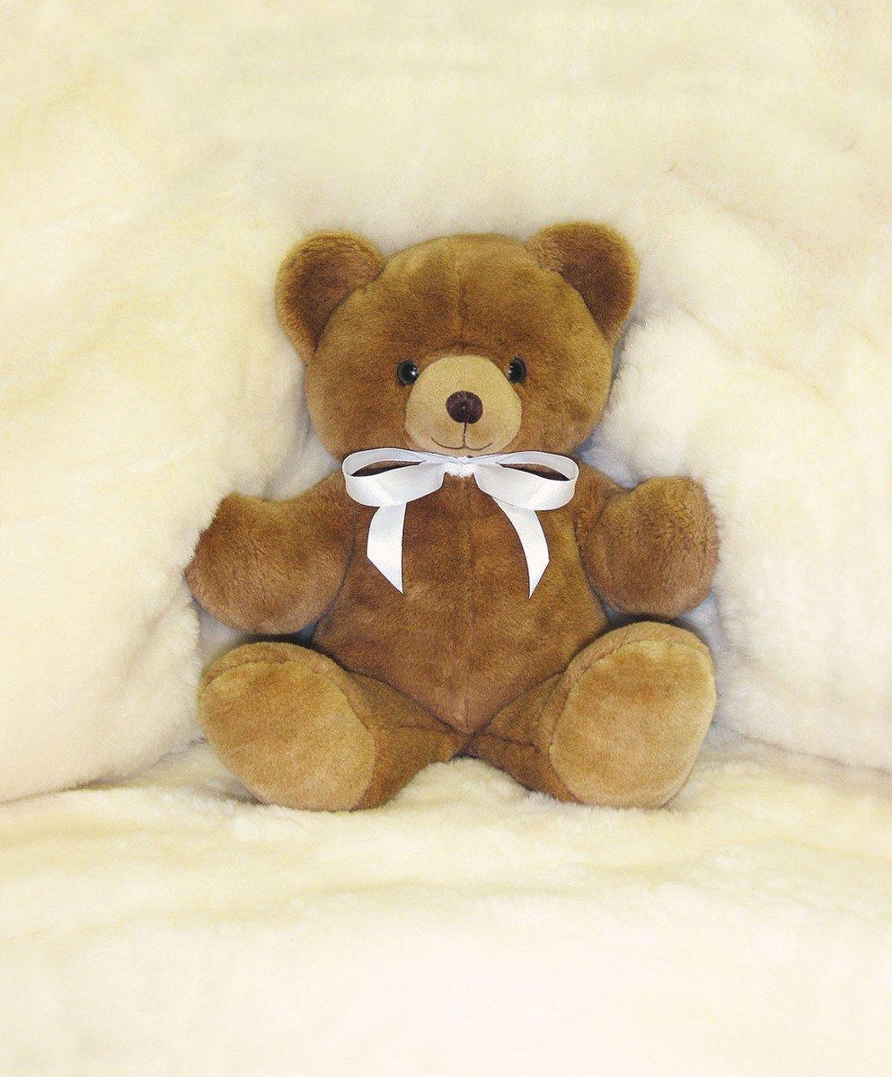 Free teddy bear stock photo - Free teddy bear pics ...