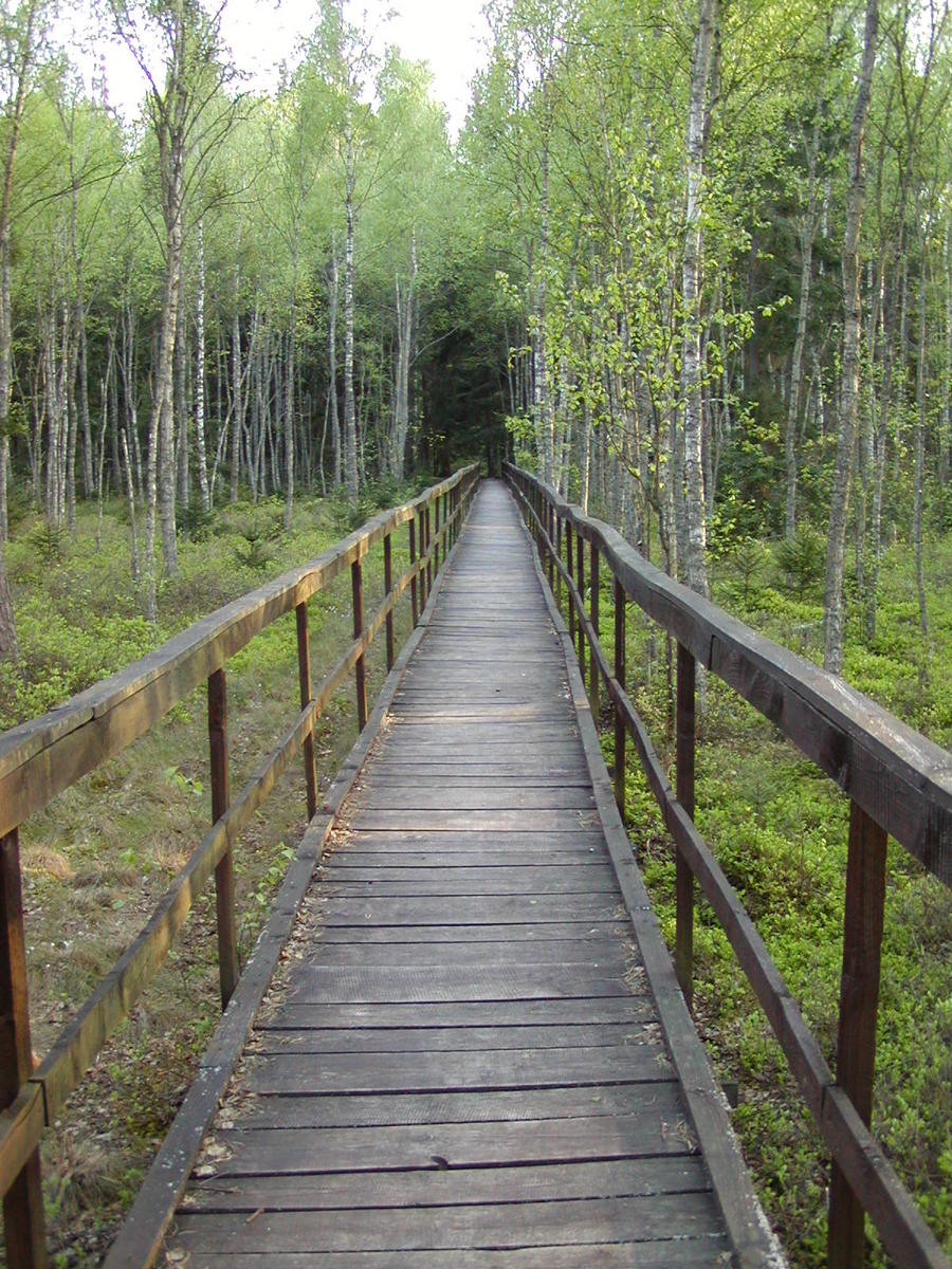 Free Wooden Walkway Stock Photo - FreeImages.com