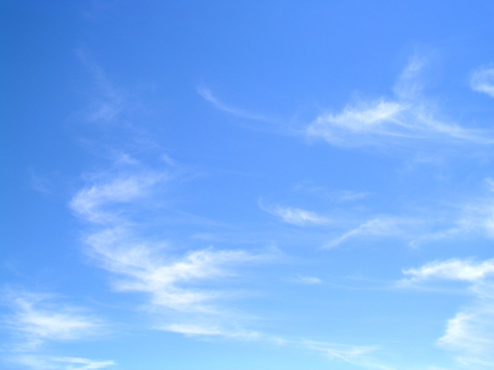 Sky Gratis