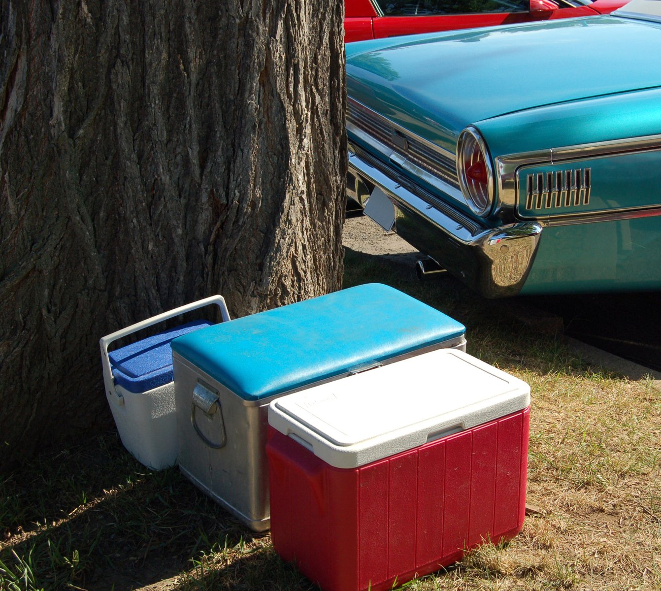Free Picnic Coolers Stock Photo Freeimages Com