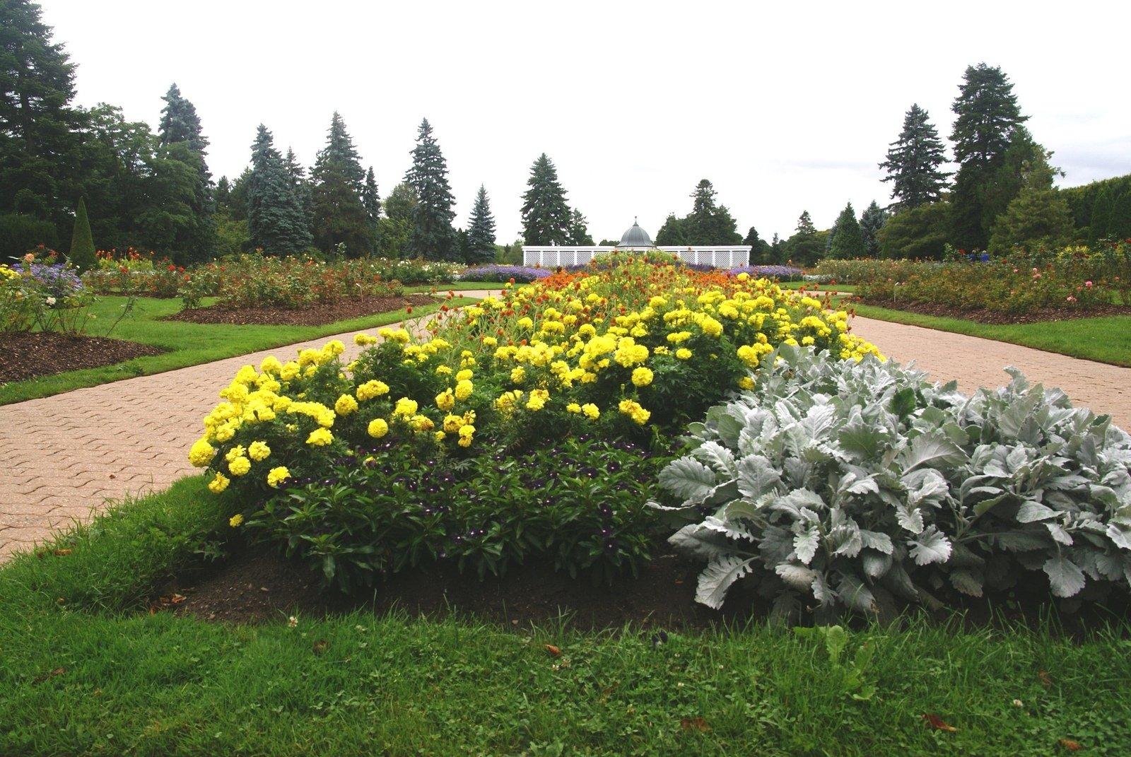 Free Botanical Garden Stock Photo