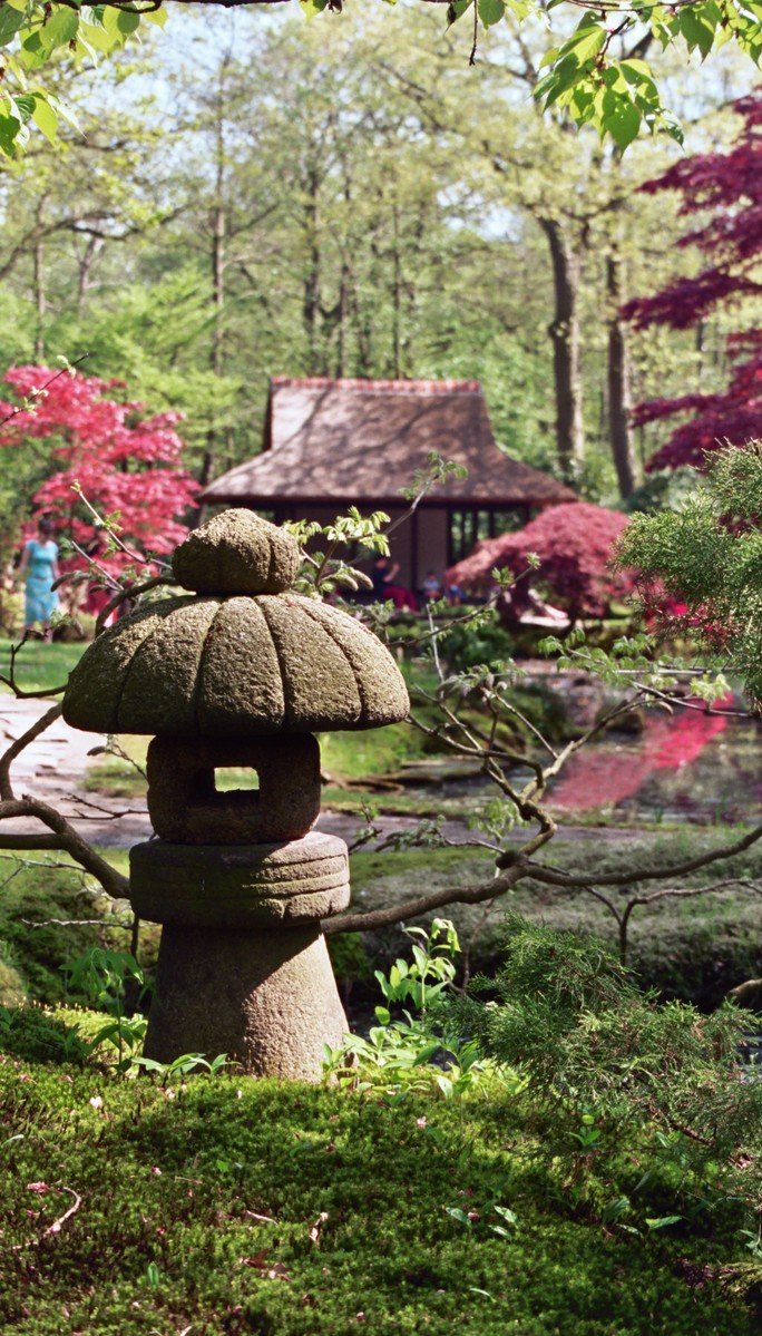 Free Japanese Garden Stock Photo Freeimages Com