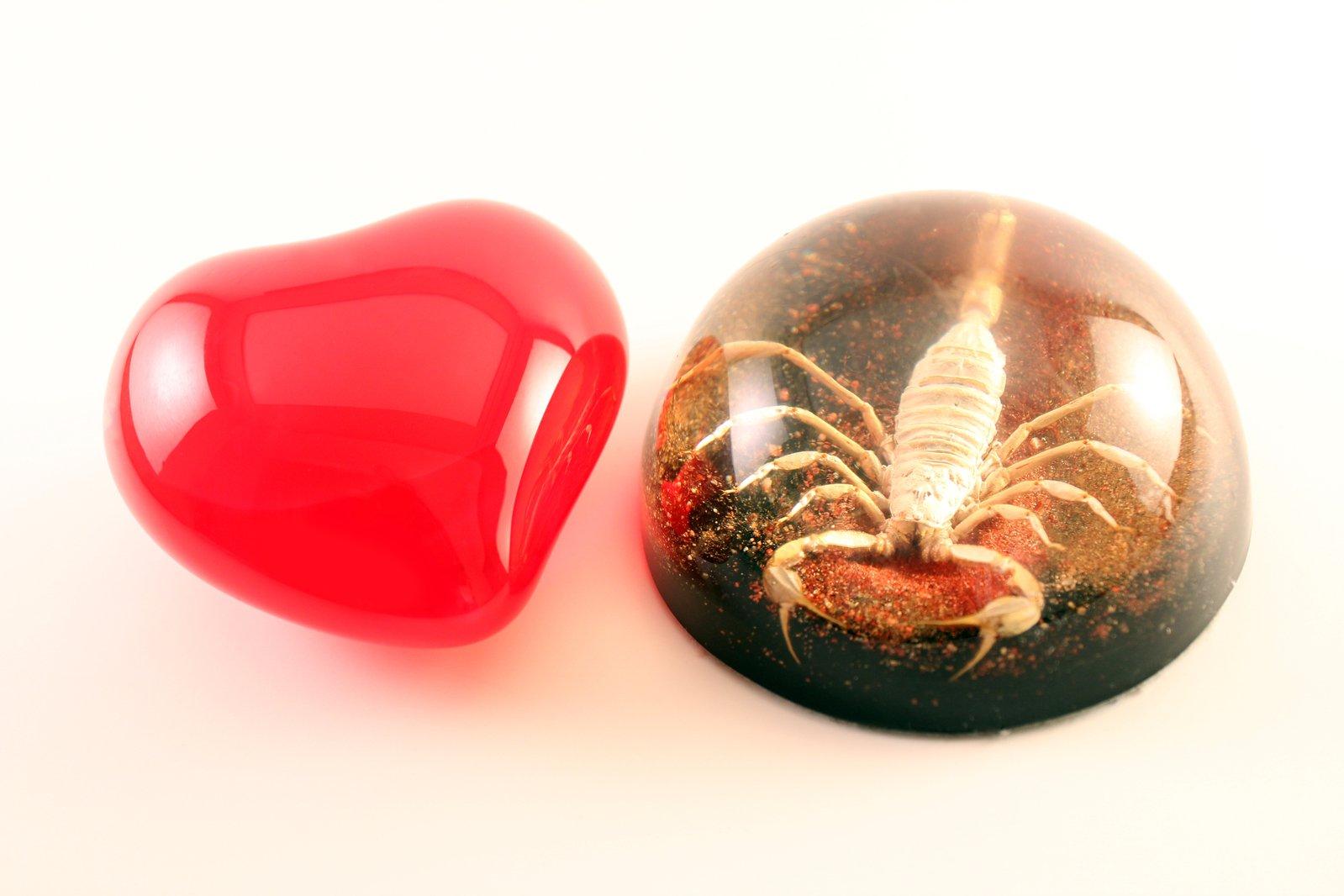 Открытка скорпиончик в сердечке