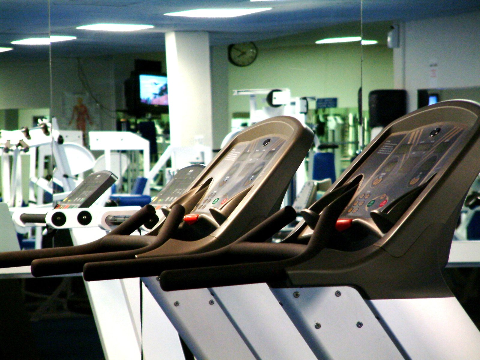 fitness Series 1