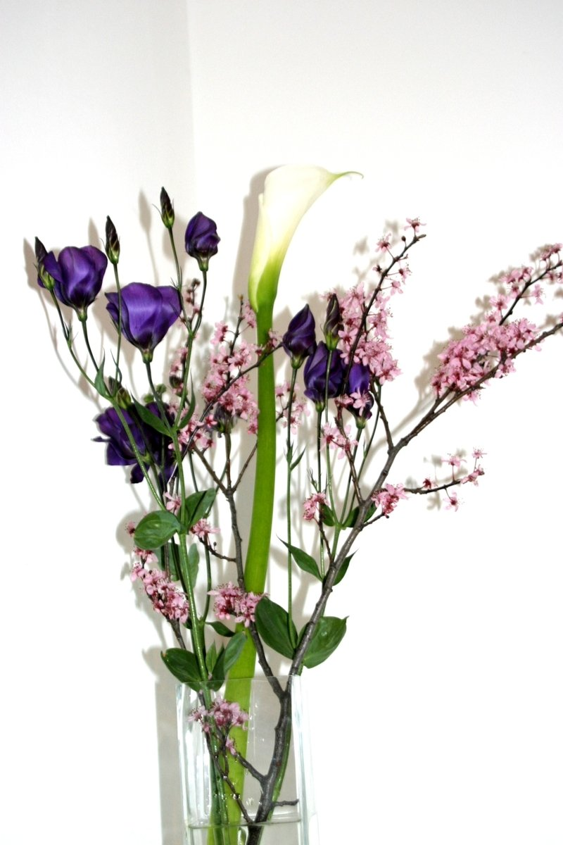 Free Birthday Flowers 2 Stock Photo Freeimages