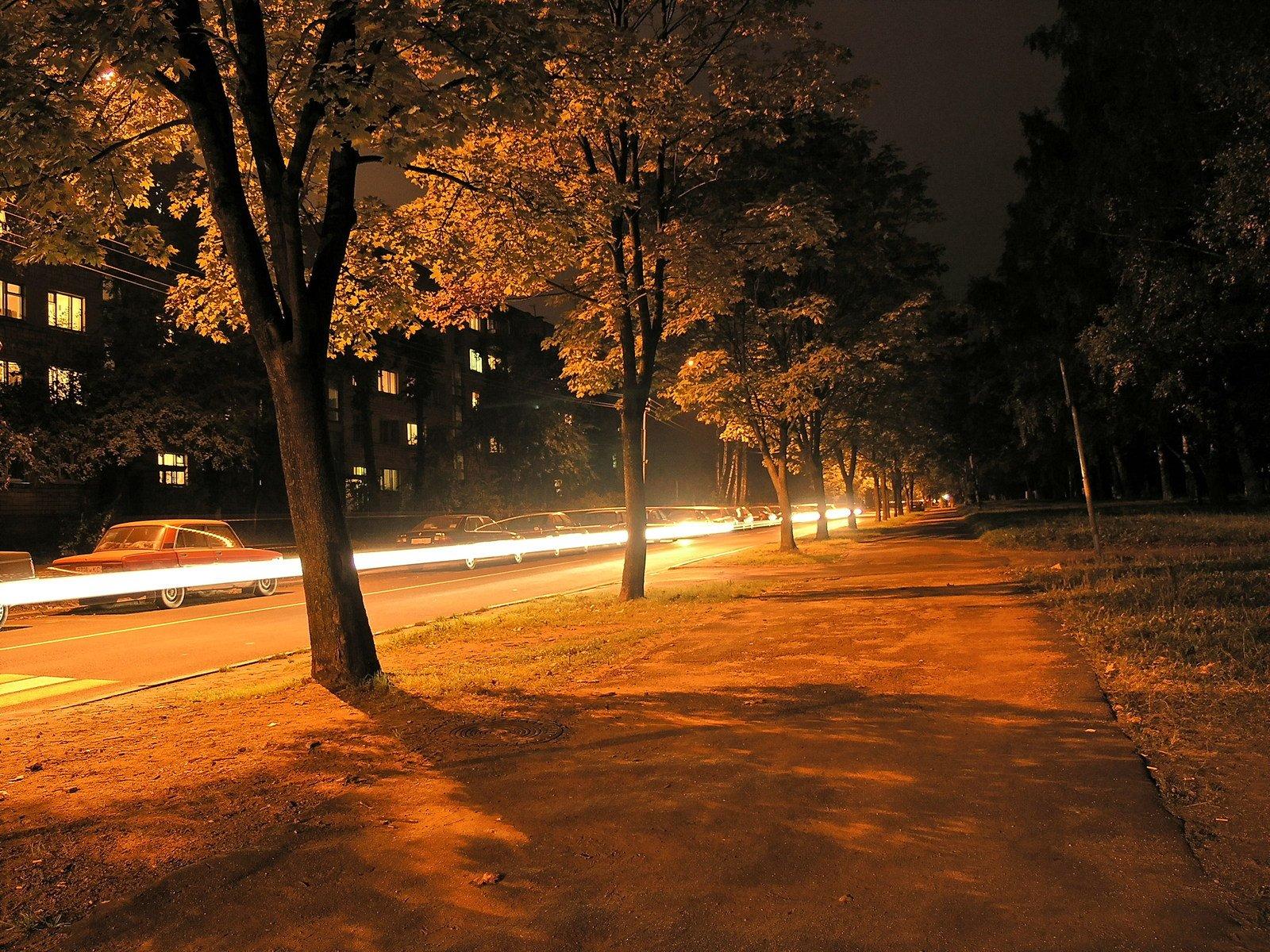 free 夜间街道 2 stock photo