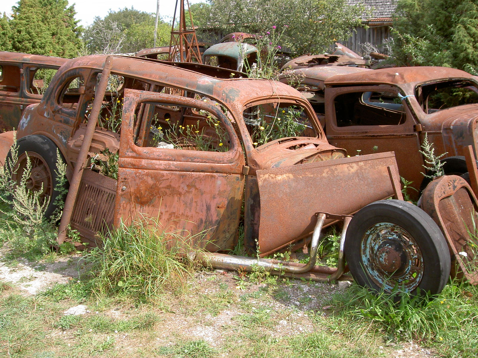 Rusty old cars 1