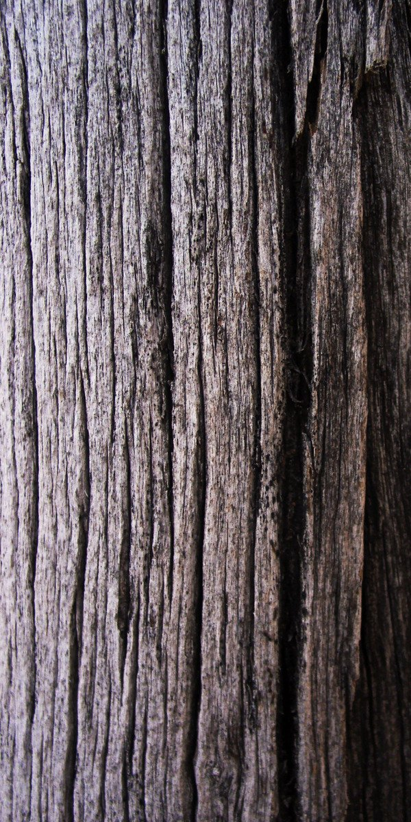 Free Texture Weathered Wooden Pol Stock Photo