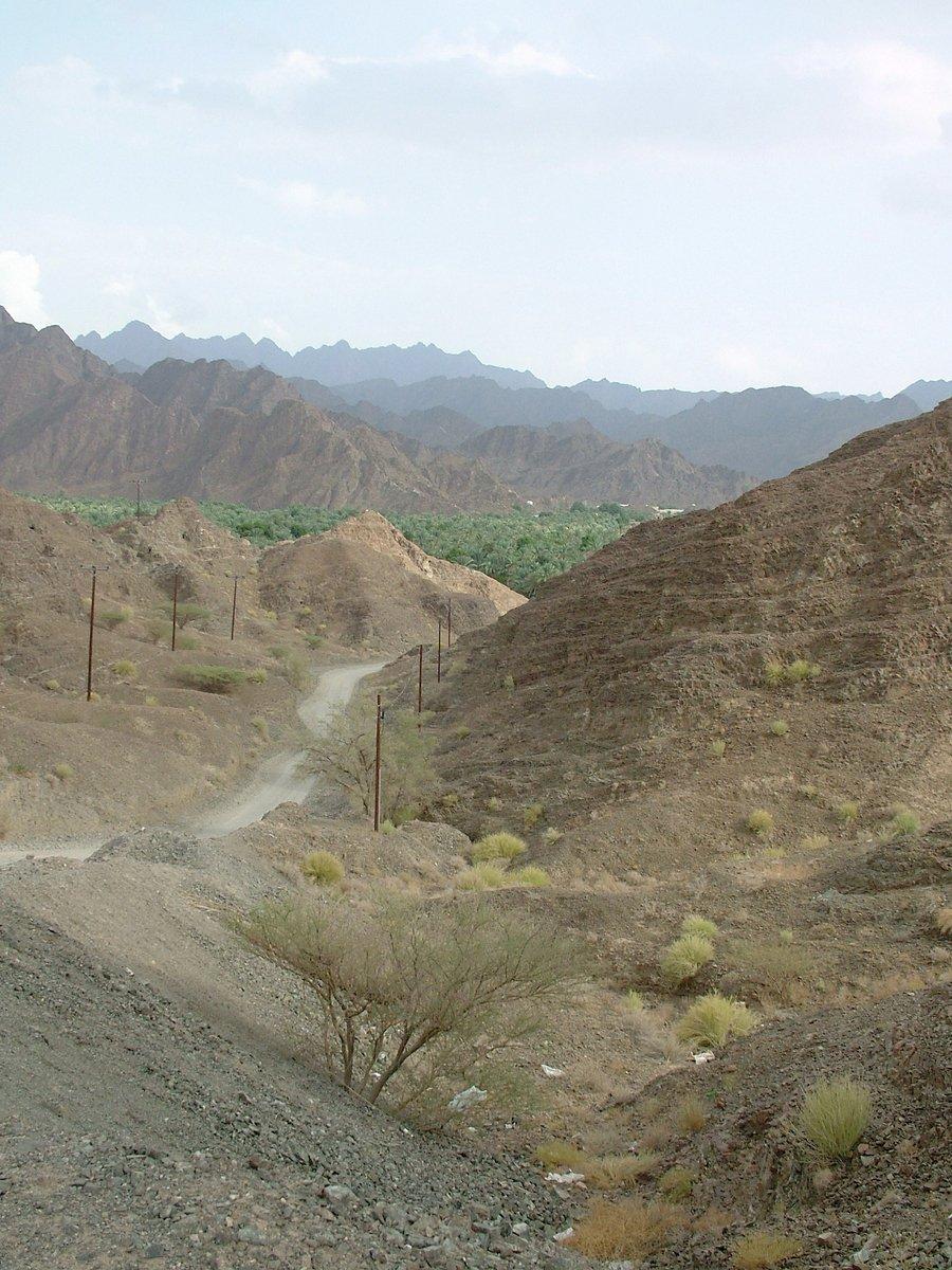Omani free