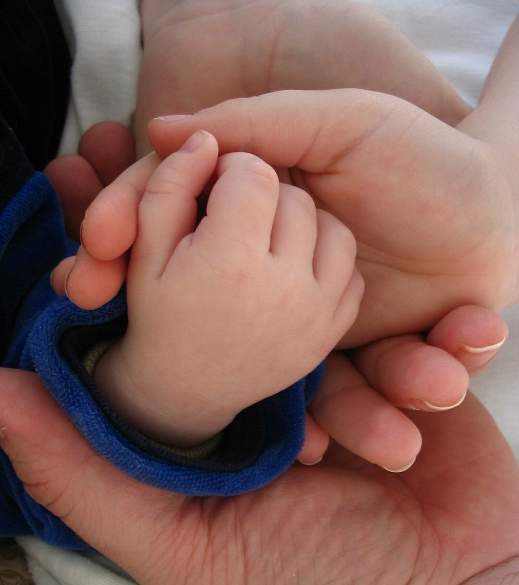 family,hands,parents,children
