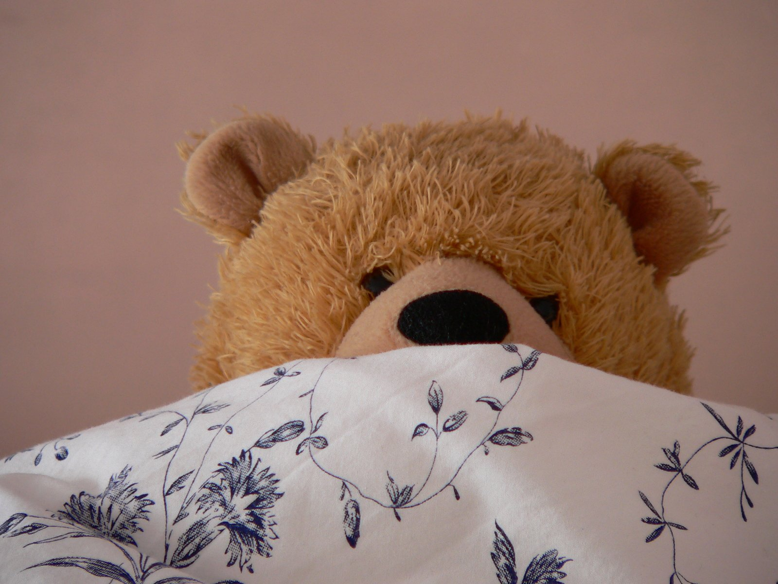 Medvídek v posteli pod přikrývkou