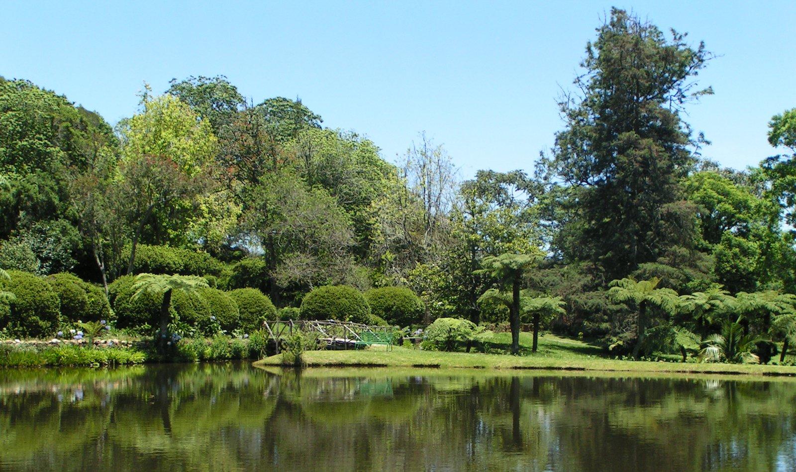 Free Vumba Botanical Garden Stock Photo