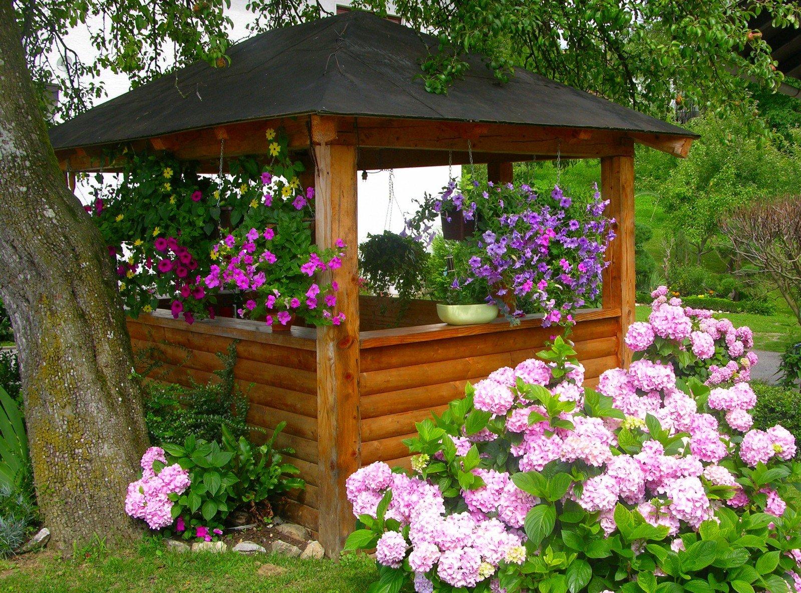 Цветы около беседки на даче фото