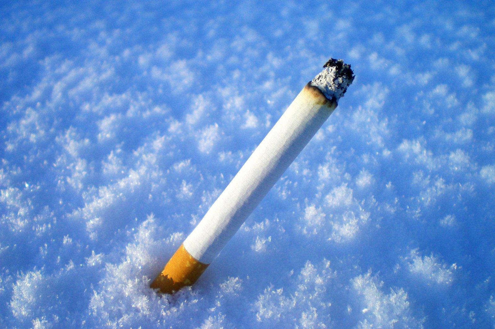 Китайские сигареты фото вас частный