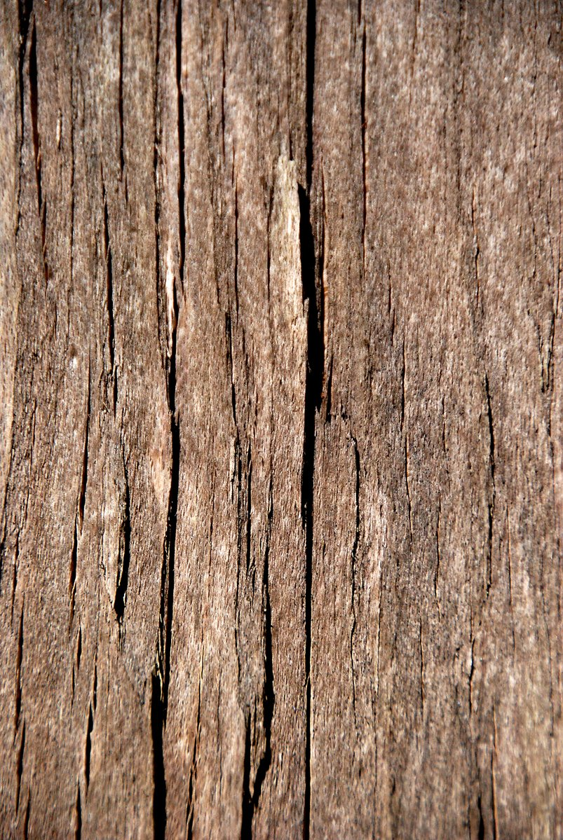 Free Old wood texture 4 Stock Photo - FreeImages.com