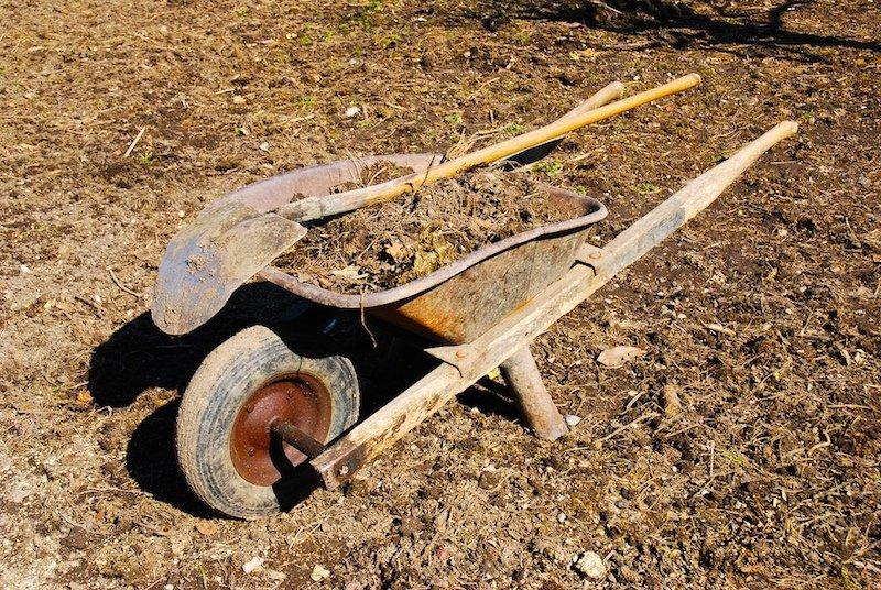 A wheelbarrow on a field