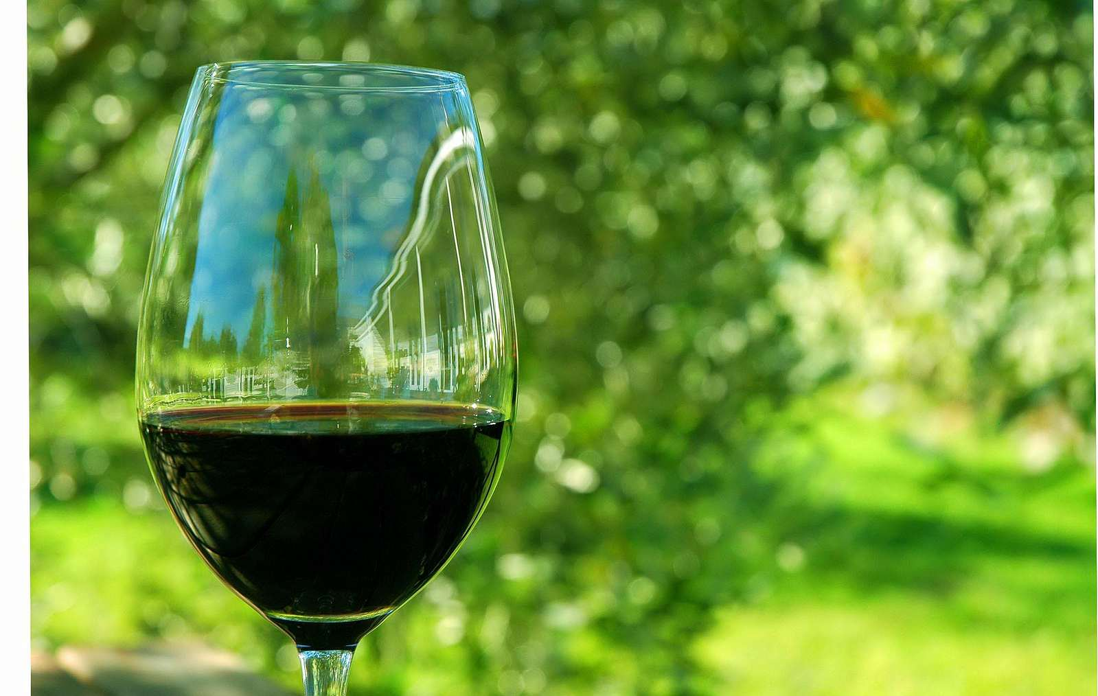 elaboración de vino en Nueva Zelanda