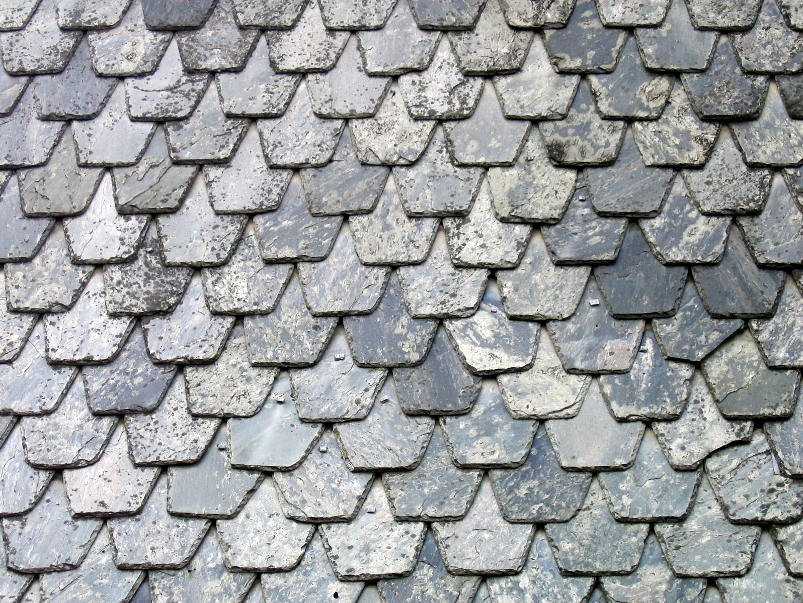 Free slate roof tiles Stock Photo - FreeImages com