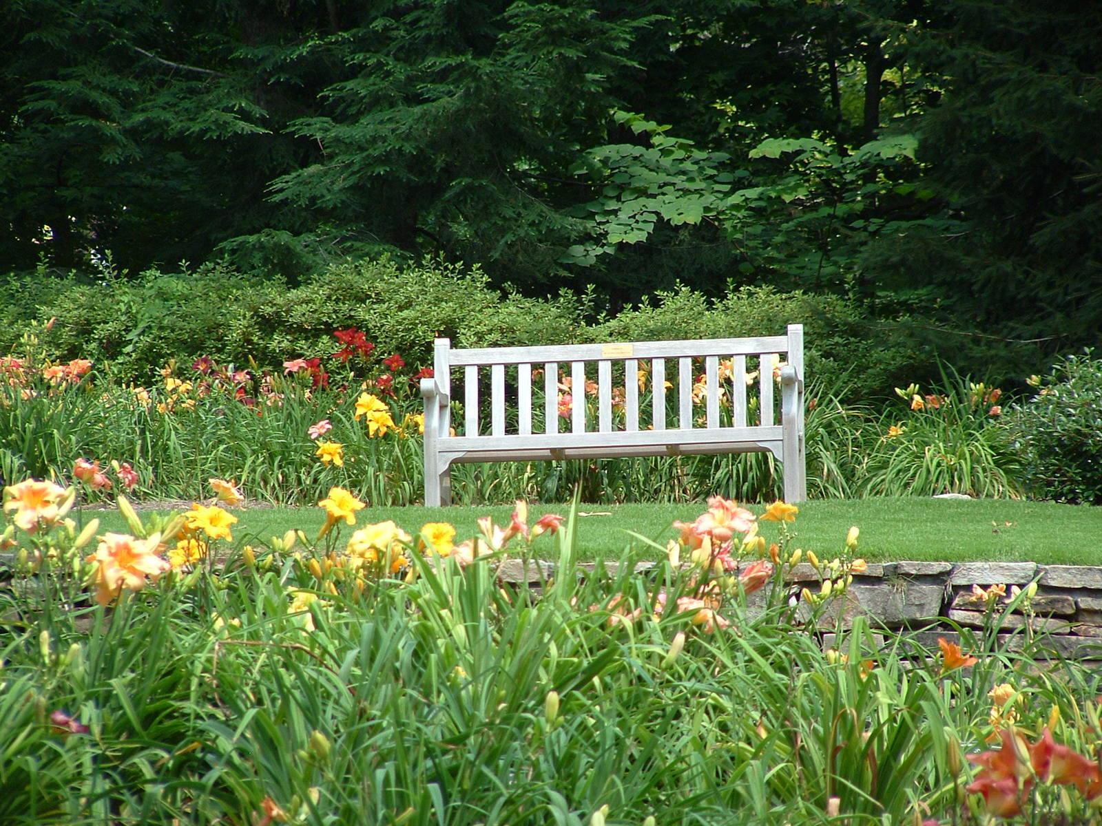 Free Botanical Gardens 3 Stock Photo