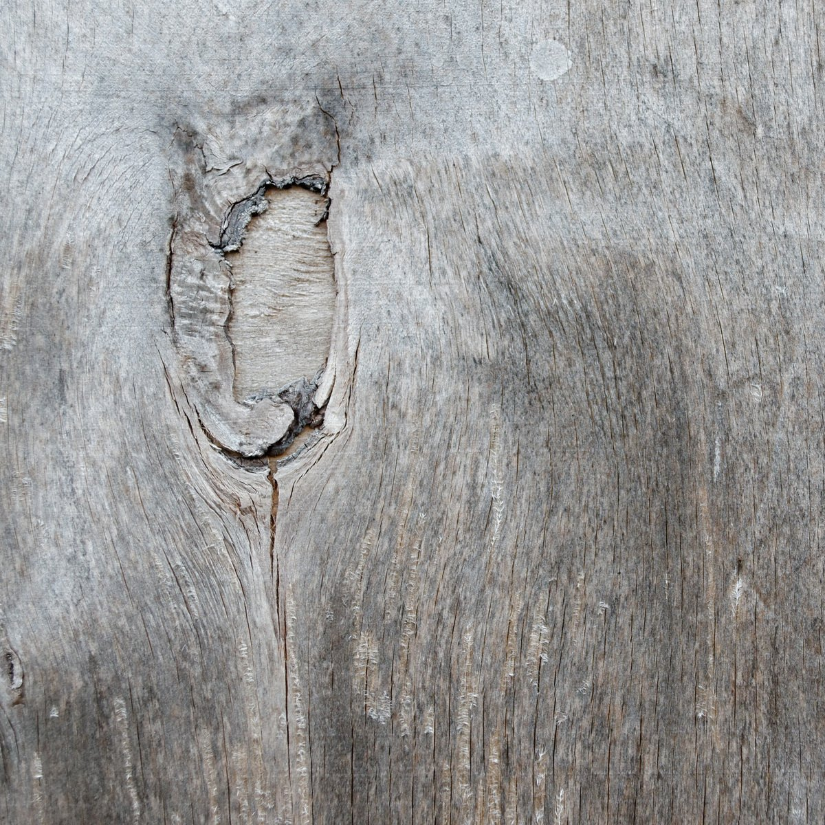 Free Sheet Of Plywood With A Knot Stock Photo Freeimages Com