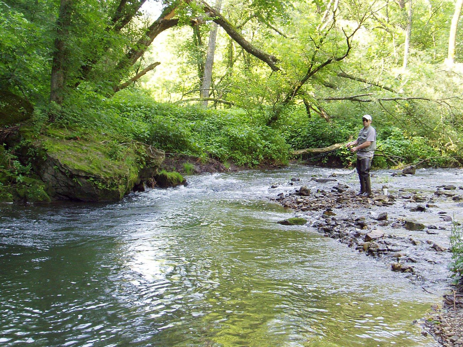 Pêcheur de truite de ruisseau