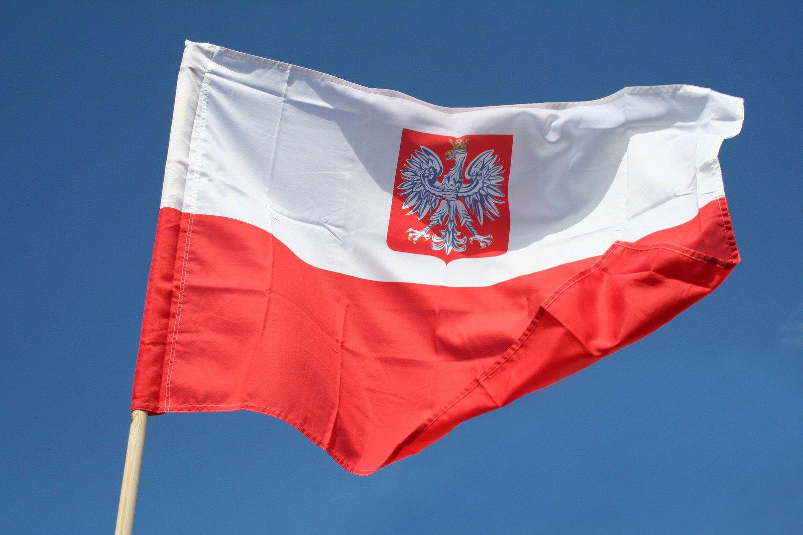 Польский флаг фото картинки