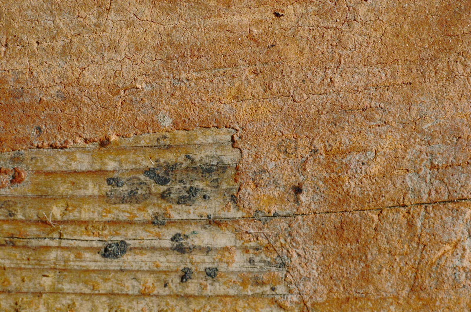 free alten lack auf holz stock photo - freeimages