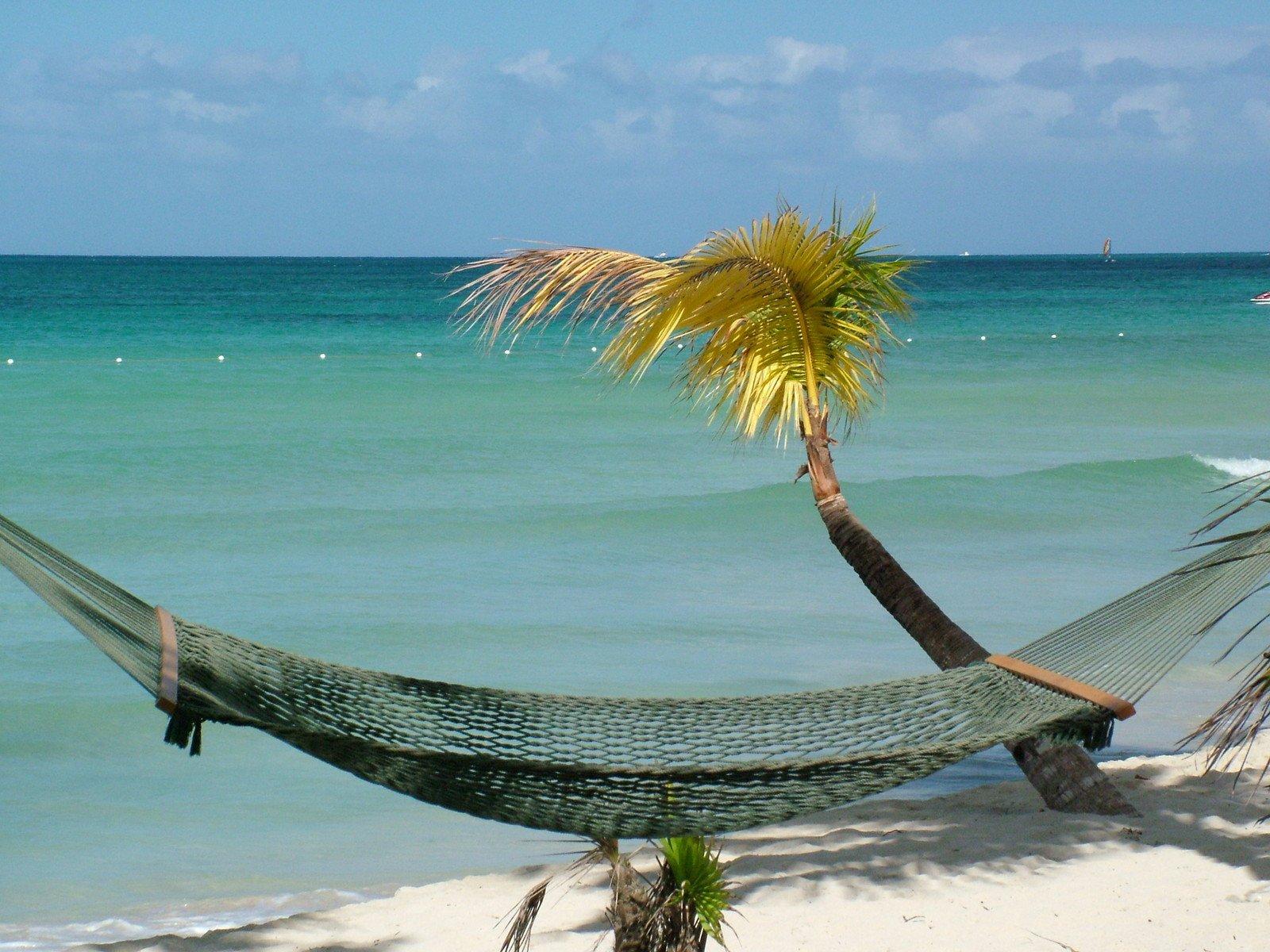 Free Jamaican Beach Hammock Stock Photo