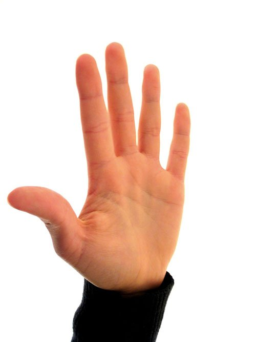 Free Counting Fingers 5 Stock Photo Freeimages Com