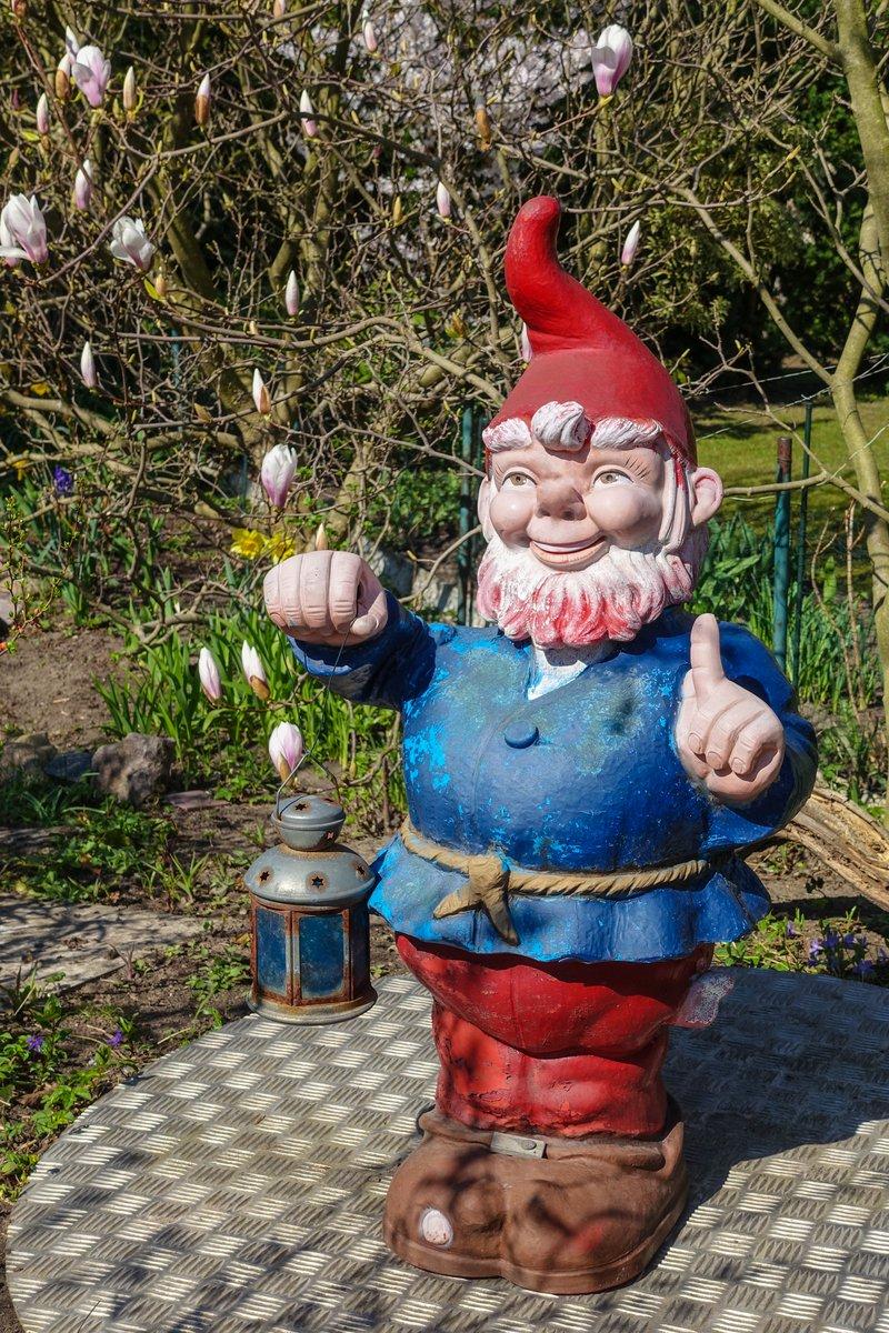 Gnome In Garden: Free Large Garden Gnome Stock Photo