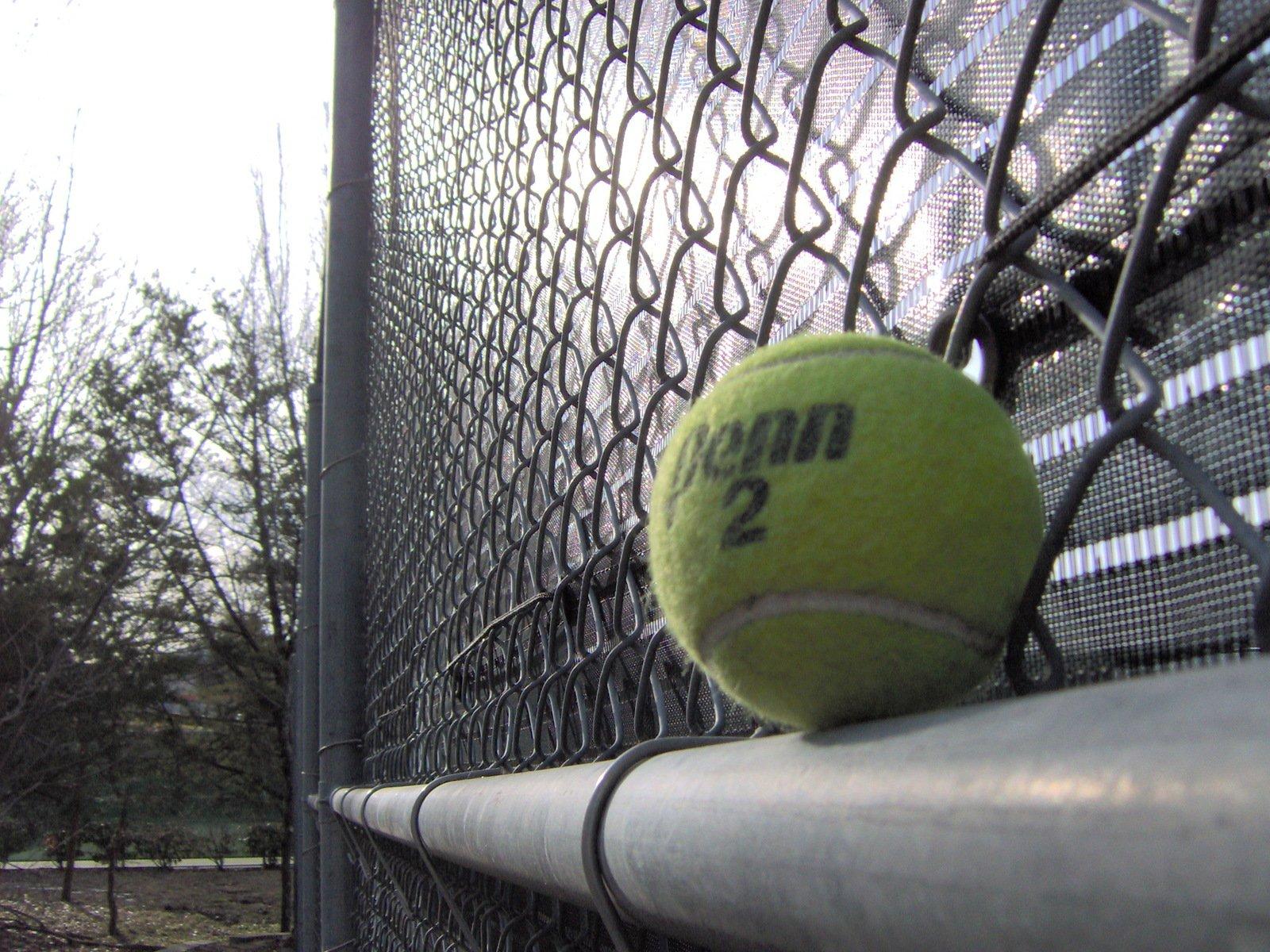 Free Bola De Tnis Stock Photo Freeimagescom Tennis
