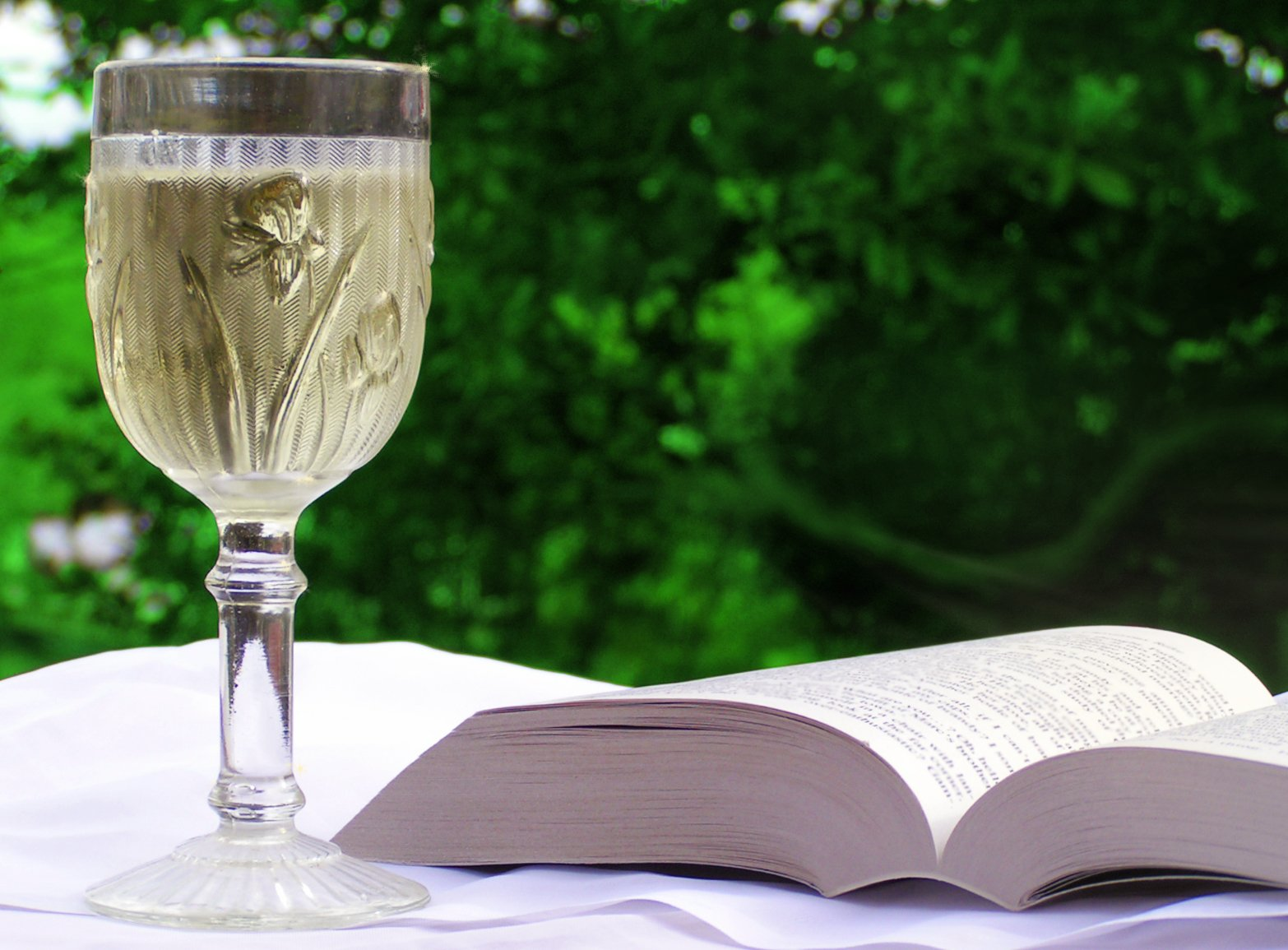Glass of wine with book