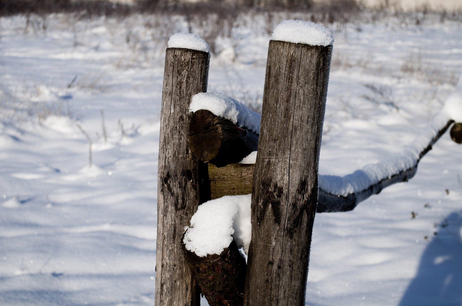 冬天的景色 2