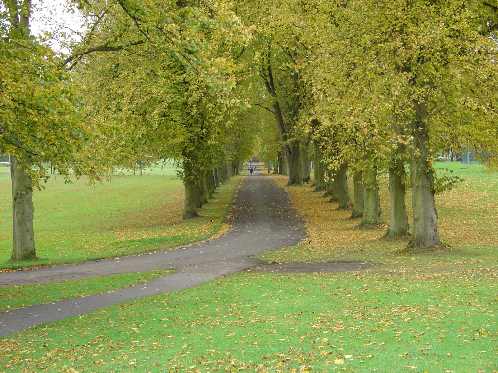 Free Lurgan Park, Northern Ireland Stock Photo ...