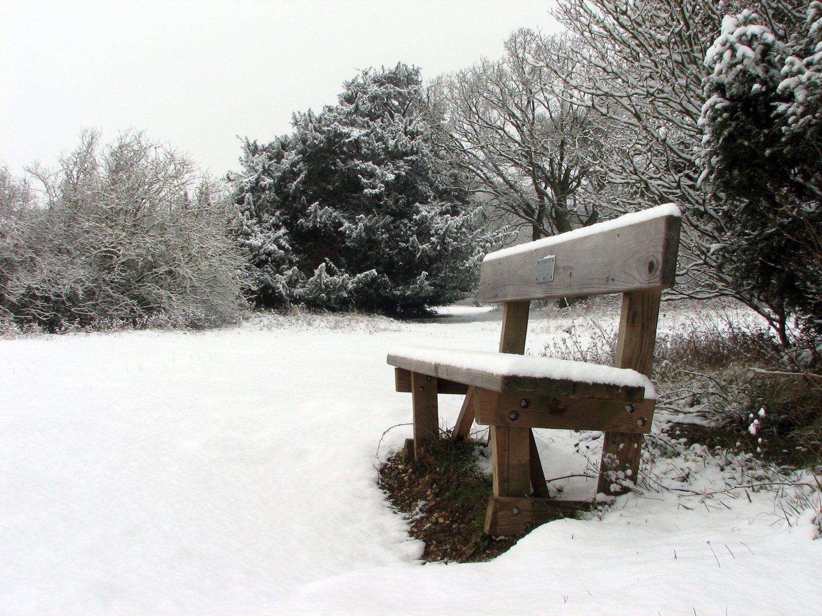 Free Snow Bench Stock Photo Freeimages Com