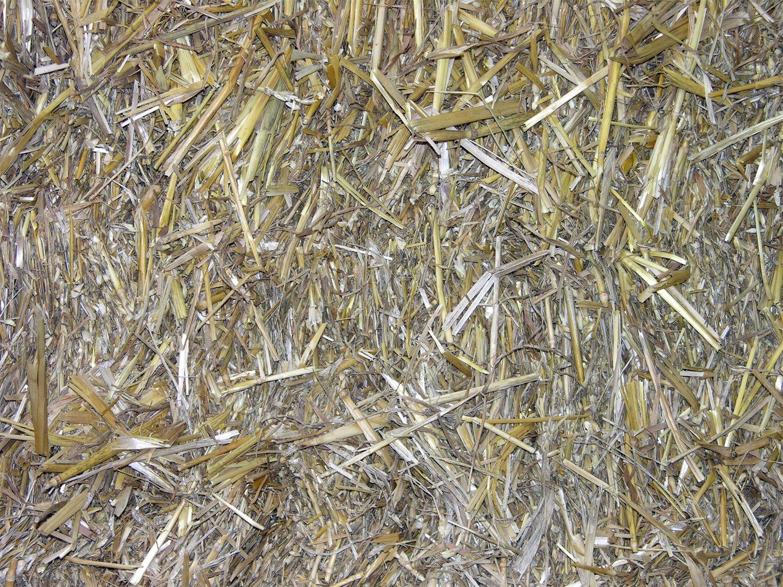 Free textura de paja @fall 4 Stock Photo - FreeImages.com