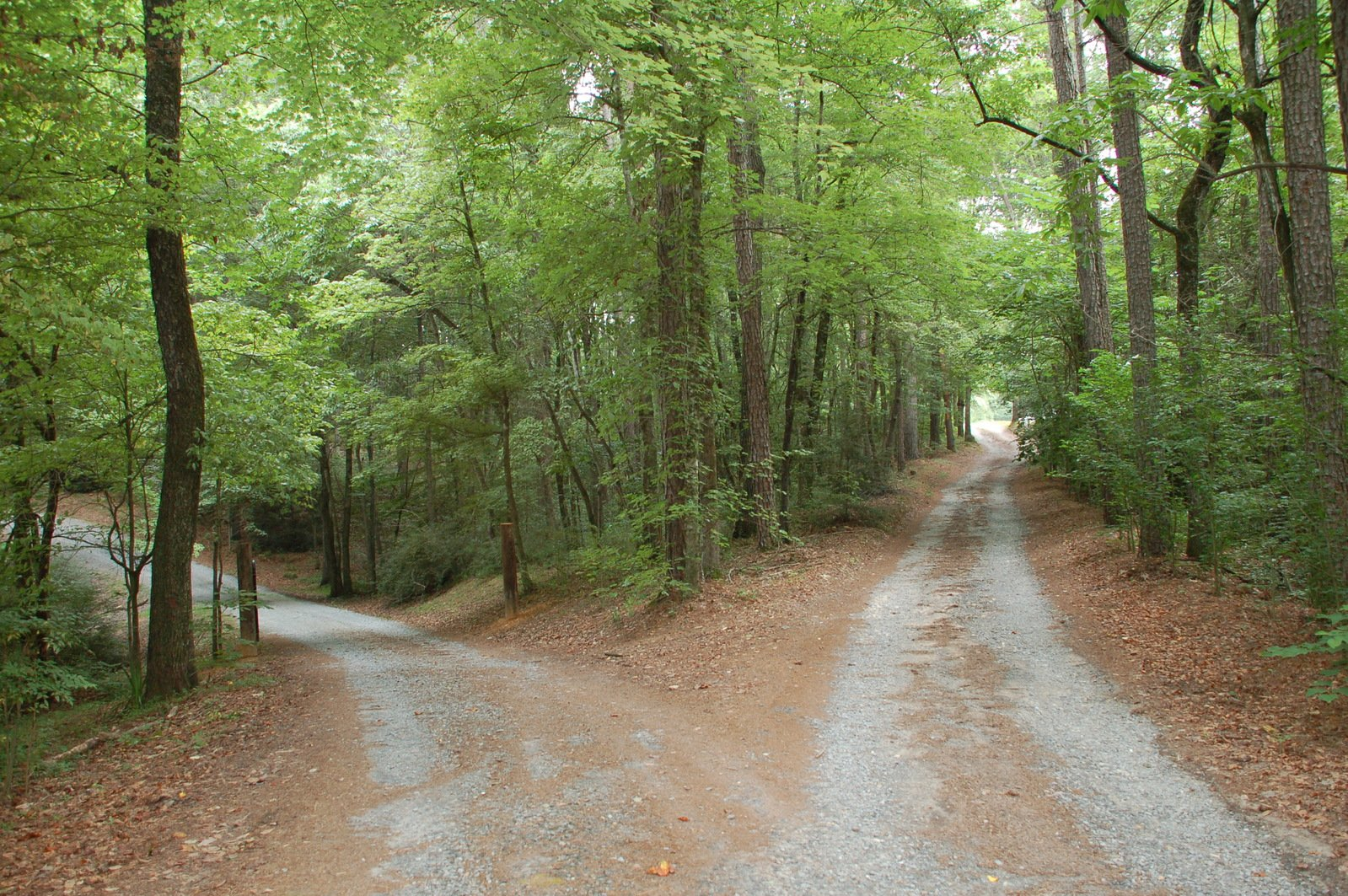 """two roads By tom lambrecht- with apologies to robert frost, one of my favorite poets, he describes the current situation in the united methodist church in his poem, the road not taken: """"two roads diverged in a yellow wood""""."""