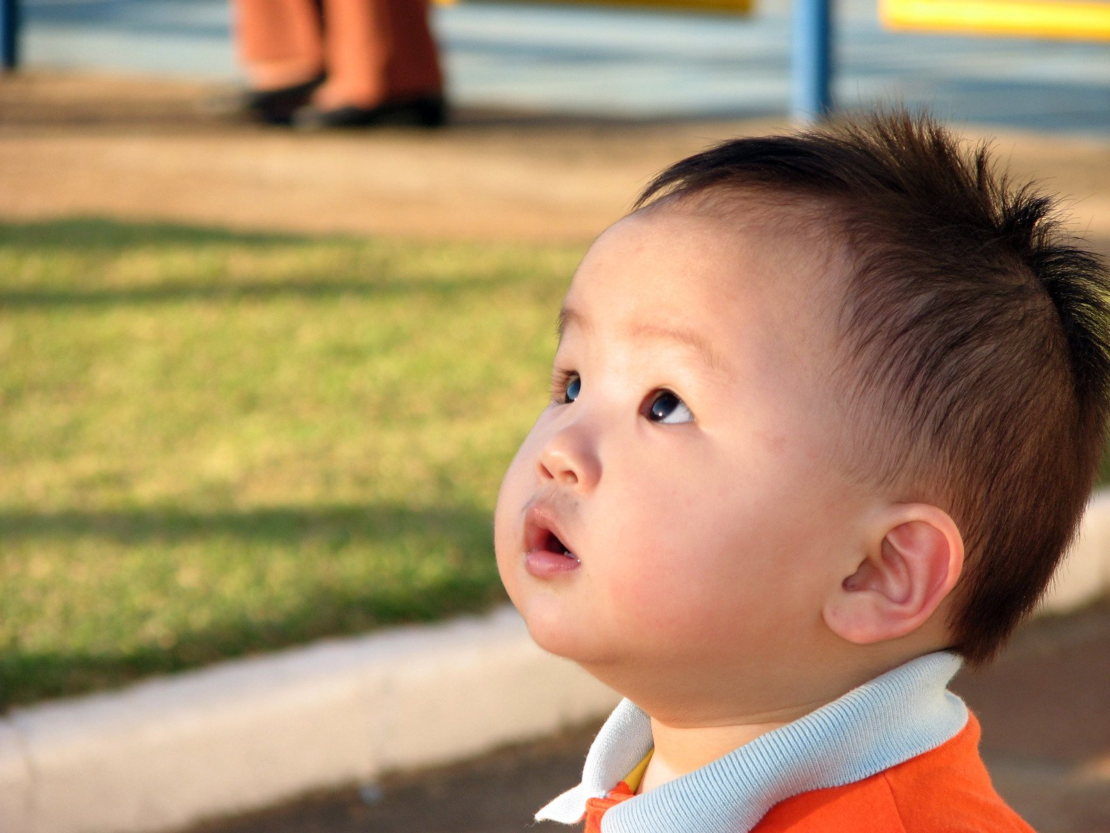 Free Little Asian Boy Surprised Stock Photo - FreeImages.com