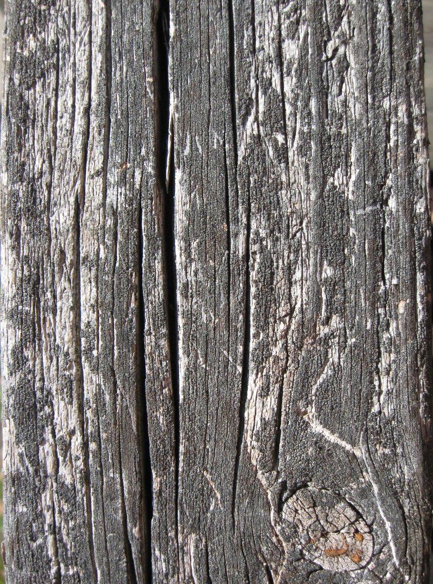 Wooden Texture 01