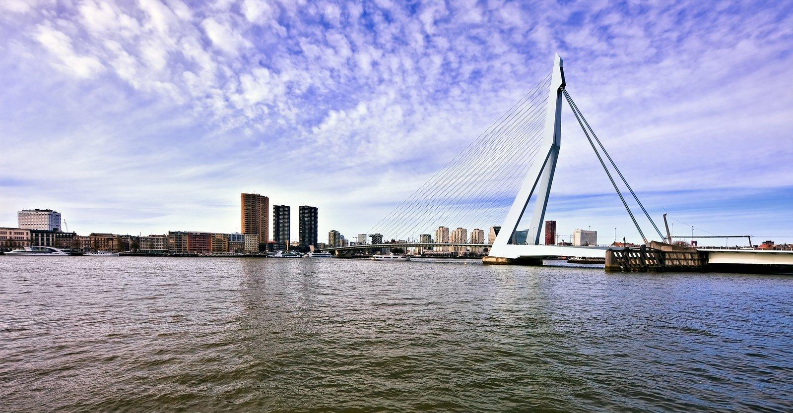 Free Erasmus bridge Stock Photo - FreeImages.com