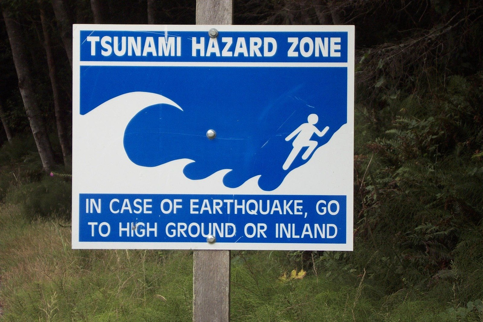 free tsunami warning sign stock photo