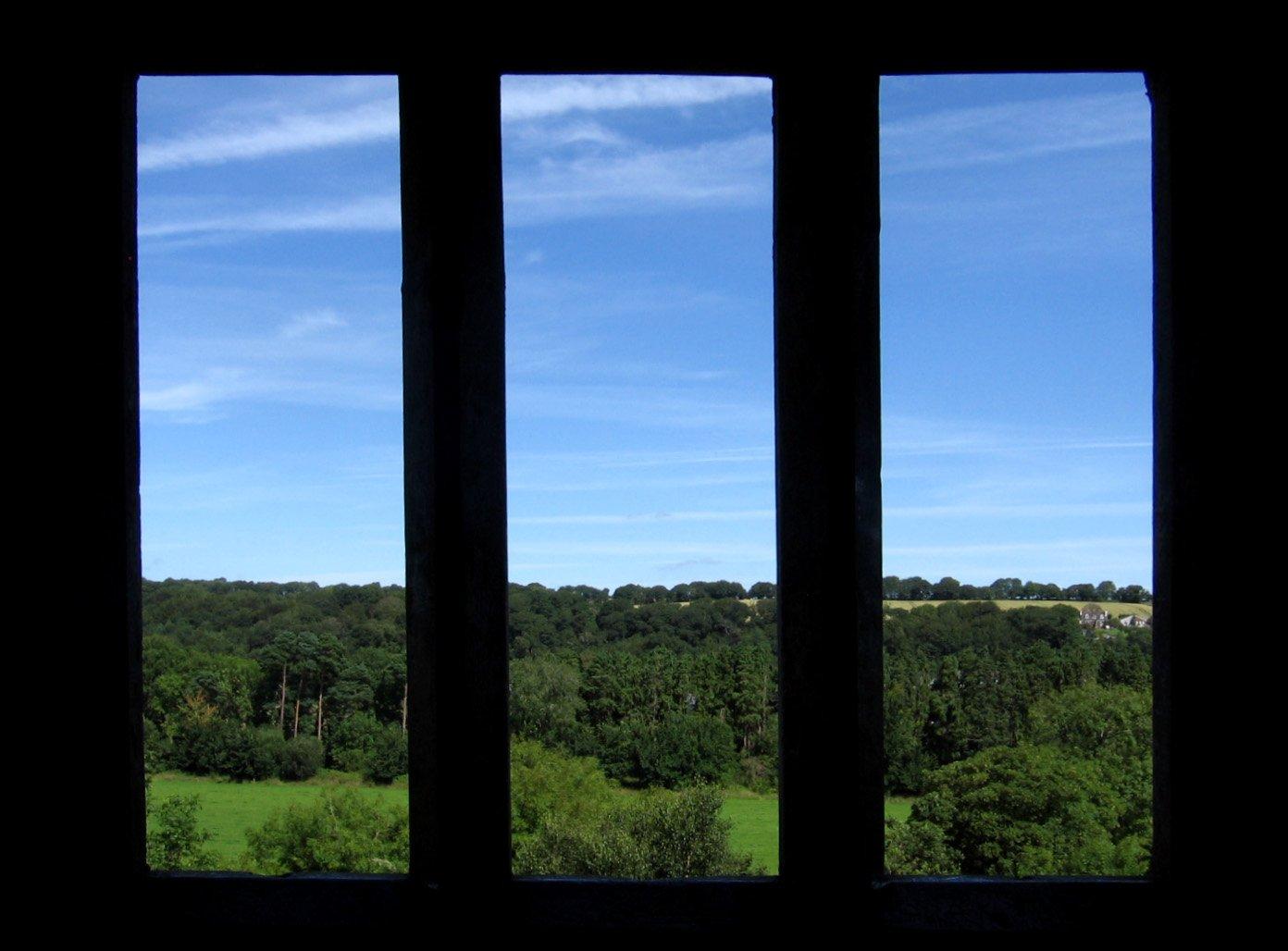 Panoramic Window View Photograph 1212608