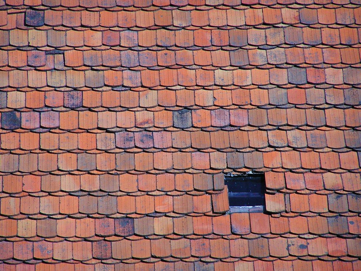 Slate tile roof texture